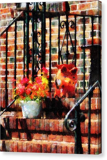 Geraniums And A Pig Canvas Print by Susan Savad