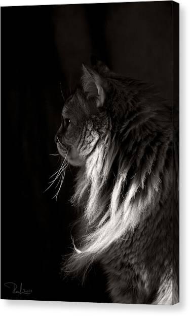 Ghiga In The Dark Canvas Print
