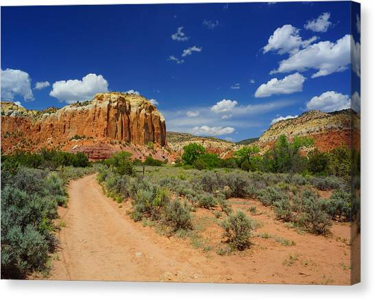 Ghost Ranch Box Canyon Trail Vista   Canvas Print