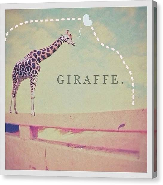 Giraffes Canvas Print - #giraffe #animal #collage #i_promote by Simone Gruber