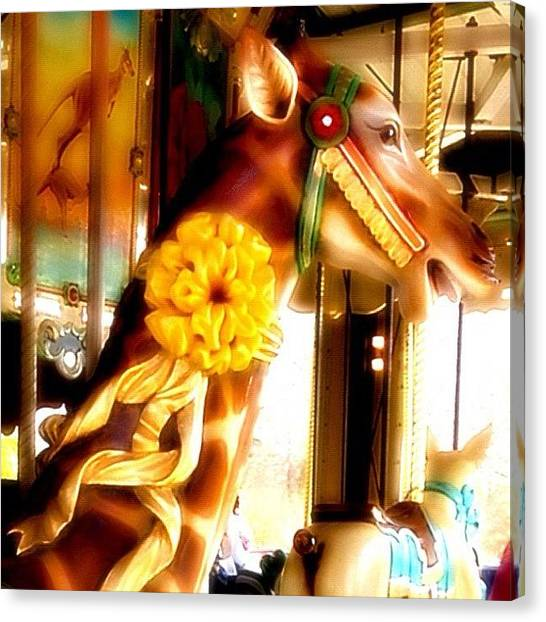 Giraffes Canvas Print - Giraffe #myrtlebeach by Stephanie Thomas