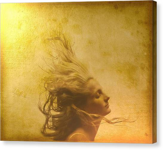 Profile Canvas Print - Glowing In The Wind by Gun Legler