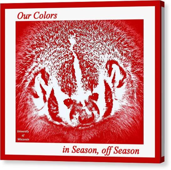 University Of Wisconsin - Madison Canvas Print - Go Go Badgers by Zafer Gurel