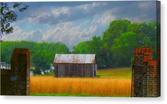 Gods Country Canvas Print by Trish Clark