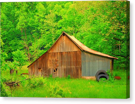 Going Green Canvas Print by Robin Pross