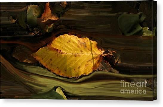 Gold Leaf Canvas Print
