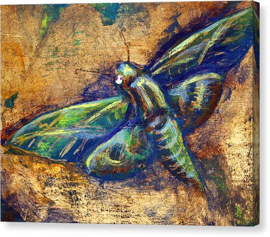 Gold Moth Canvas Print
