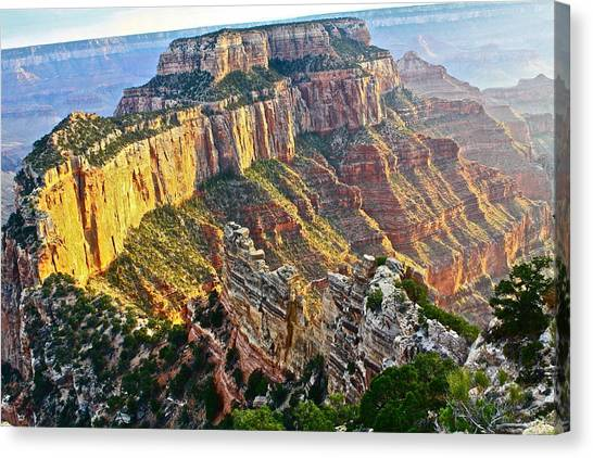 Gold Rim Canvas Print