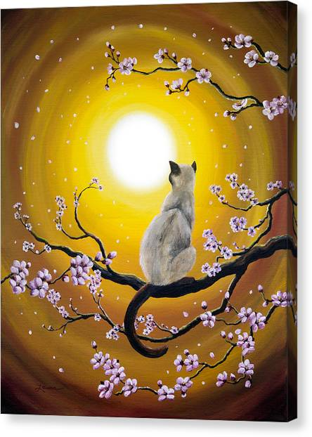 Siamese Canvas Print - Golden Afternoon Sakura by Laura Iverson