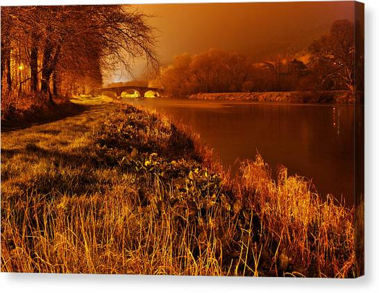 Golden Glow Canvas Print