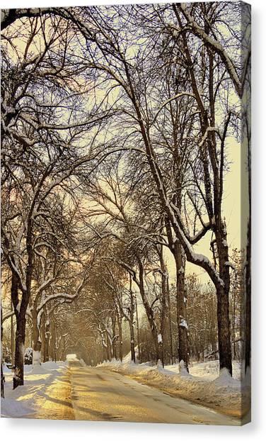 Golden Hues Canvas Print