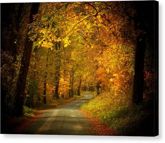 Golden Road Canvas Print by Joyce Kimble Smith