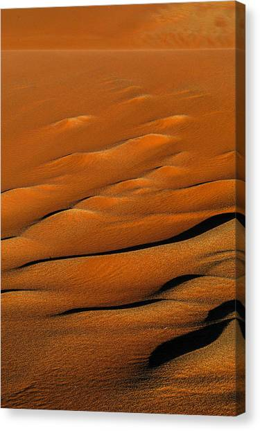 Golden Sand Canvas Print