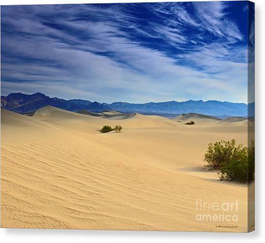 Golden Sand Dunes Death Valley National Park Canvas Print