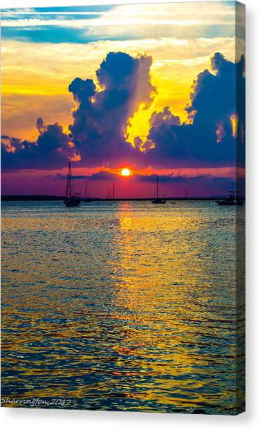 Golden Waters Canvas Print