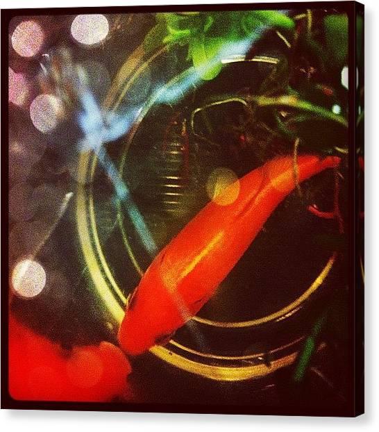 Kiss Canvas Print - #goldfish #fish #pet #animal #nature by Victor Wong