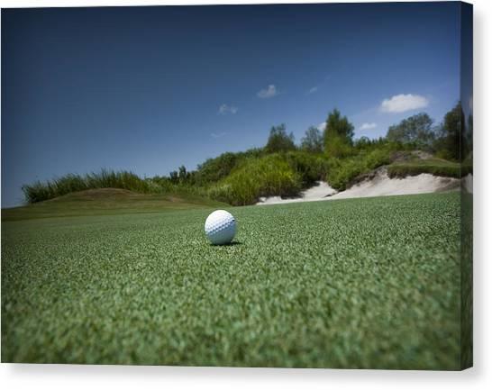 Golf 1 Canvas Print by Al Hurley