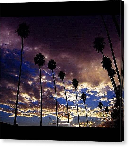 Palm Trees Sunsets Canvas Print - Good Morning From Los Angeles! by Ray Jay