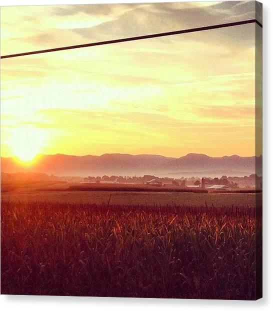 Solar Farms Canvas Print - Good Morning by Sam Harris