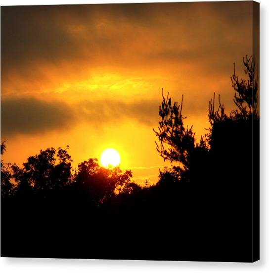 Good Night Mr. Sun Canvas Print