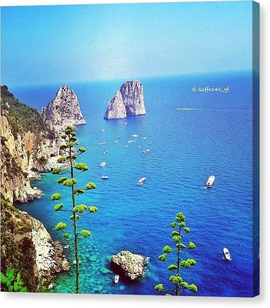 Magicians Canvas Print - Goodmorning Peeps, A Capri View Of The by Raffaele Salera