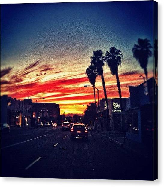 Palm Trees Sunsets Canvas Print - Goodnight La. #sunset #hollywood by Loghan Call