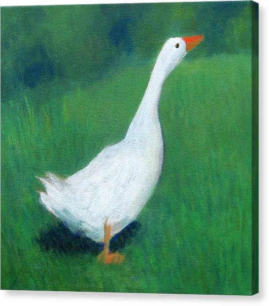 Goose On Green Canvas Print