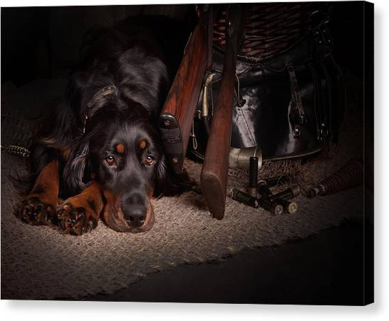 Canvas Print - Gordon Setter With Two Guns... by Tanya Kozlovsky