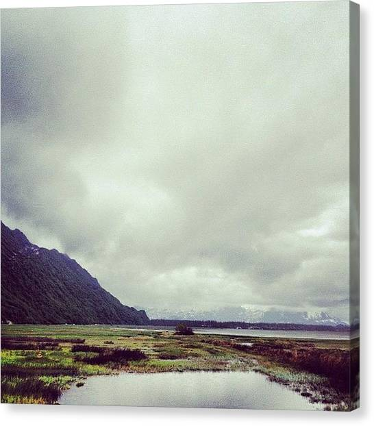 Marshes Canvas Print - Got Me A North Face Sweatshirt by Vanessa Wagener
