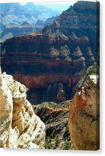 Grand Canyon A Canvas Print by Dottie Gillespie