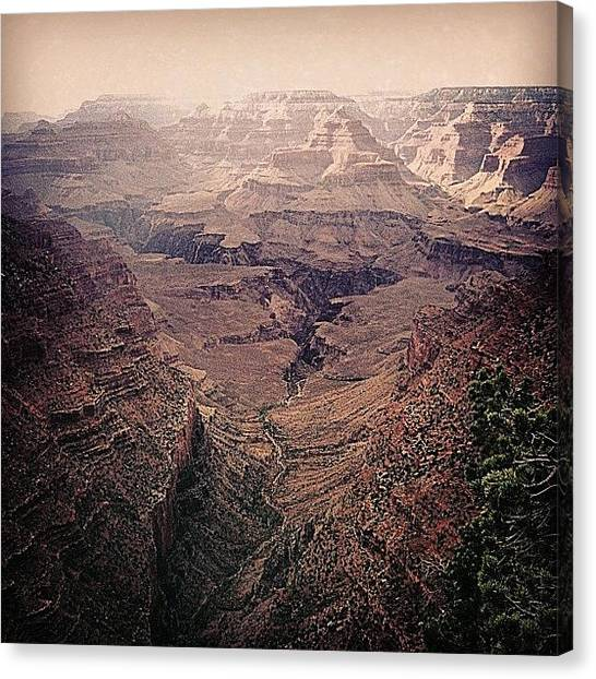 Grand Canyon Canvas Print - Grand Canyon by Becky Sake