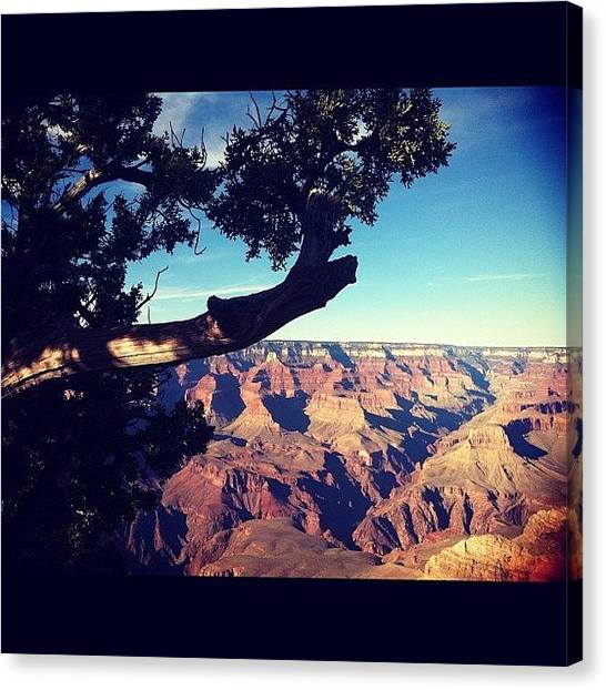 Grand Canyon Canvas Print - Grand Canyon by Cheryl Matochik