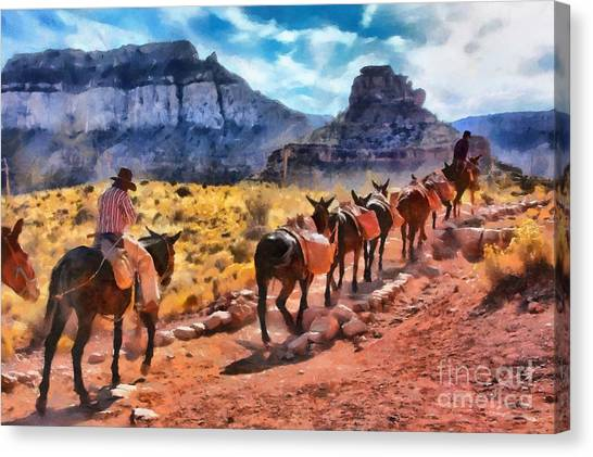Grand Canyon Mules Heading Up The South Kaibab Trail Canvas Print