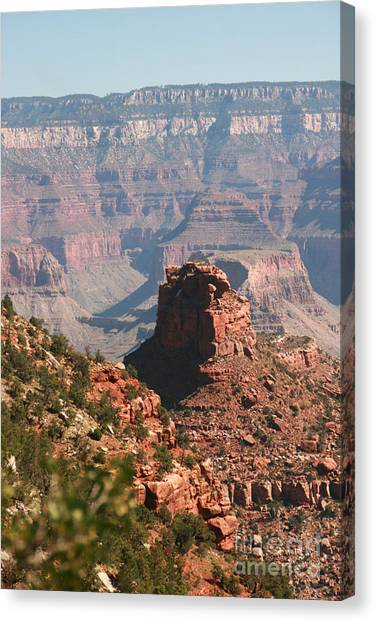 Grand Canyon National Park Arizona Usa Canvas Print by Audrey Campion