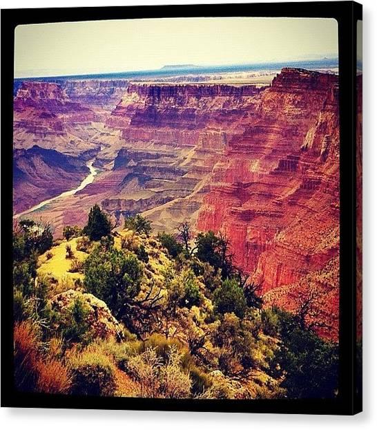 Soda Canvas Print - Grand Canyon by Soda Love