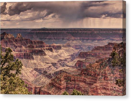 Grand Canyon Canvas Print by Tracy Lynn Hart