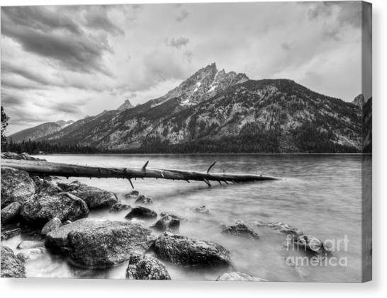 Teton Canvas Print - Grand Tetons Above Jenny Lake Jackson Hole by Dustin K Ryan