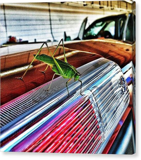 Grasshoppers Canvas Print - #grasshopper #insect #bug  #iphoneonly by Zac McMains