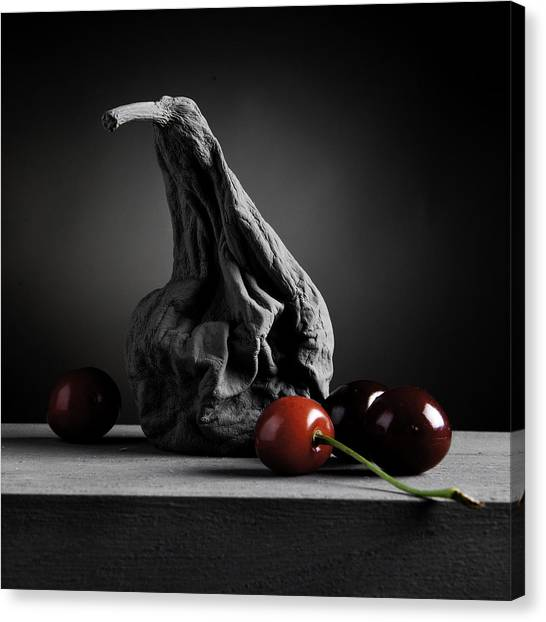 Gray Variations - Ages Canvas Print by Ovidiu Bastea