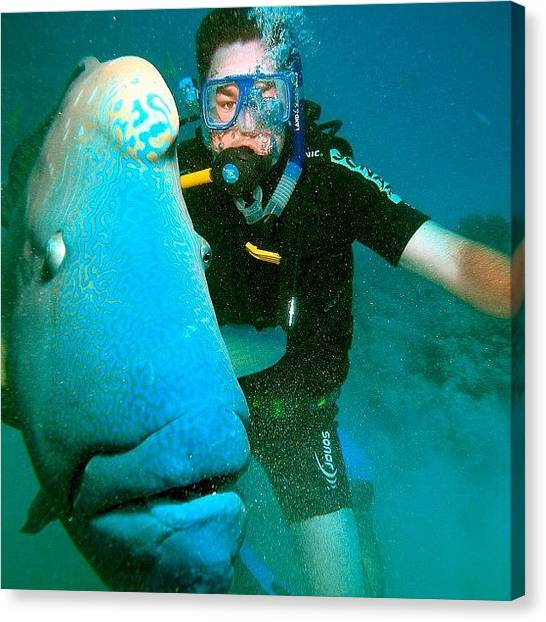 Scuba Diving Canvas Print - Great Barrier Reef - Scuba Diving by Steve Collins