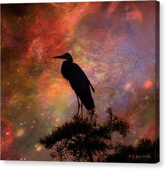 Great Cypress Canvas Print - Great Blue Heron Viewing The Cosmos by J Larry Walker
