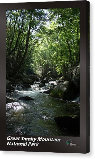 Great Smoky Mountains Np 001 Canvas Print by Charles Fox