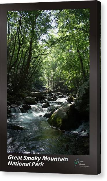 Great Smoky Mountains Np 002 Canvas Print by Charles Fox