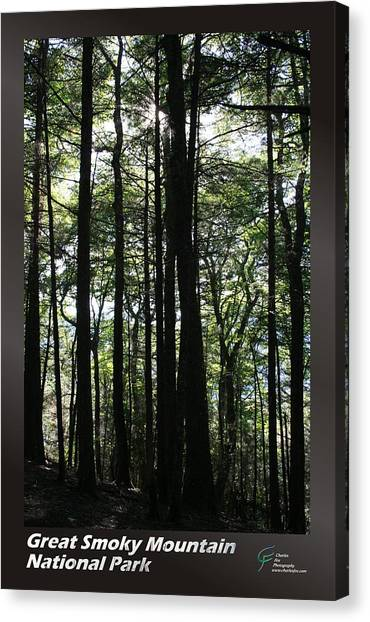Great Smoky Mountains Np 003 Canvas Print by Charles Fox