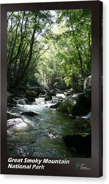 Great Smoky Mountains Np 005 Canvas Print by Charles Fox