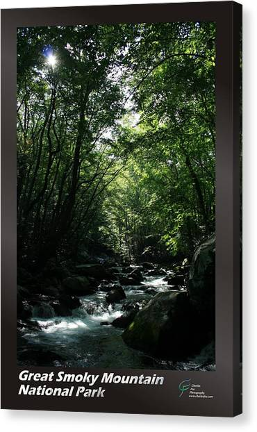 Great Smoky Mountains Np 007 Canvas Print by Charles Fox