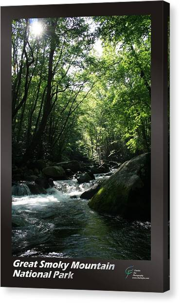 Great Smoky Mountains Np 008 Canvas Print by Charles Fox