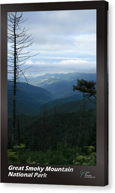 Great Smoky Mountains Np 009 Canvas Print by Charles Fox
