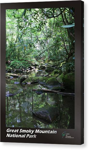 Great Smoky Mountains Np 010 Canvas Print by Charles Fox