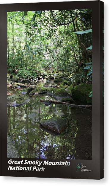 Great Smoky Mountains Np 011 Canvas Print by Charles Fox